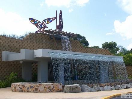 Caguas Image